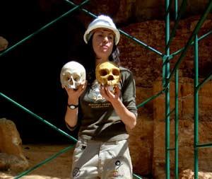 Calaveras de distintas etapas de la evolución humana en el Yacimiento Arqueológico de Atapuerca, provincia de Burgos, Castilla y León, España